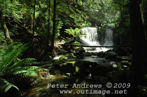 Approaching Horseshoe Falls, Mt Field National Park. Photo copyright Peter Andrews.