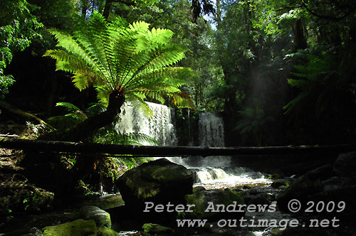 Horseshoe Falls, Mt Field National Park. Photo copyright Peter Andrews.