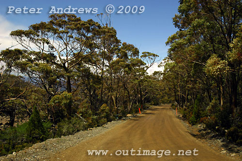 The road up to Lake Dobson, Mt Field National Park. Photo copyright Peter Andrews.
