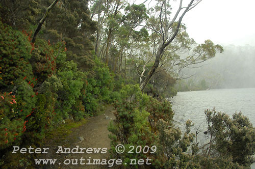 The shoreline track of Lake Dobson with snow falling over the distant background. Photo copyright Peter Andrews.