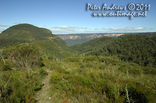 Mt Banks and the Grose Valley, from the Bells Line of Road. Photo copyright Peter Andrews, Outimage Australia.