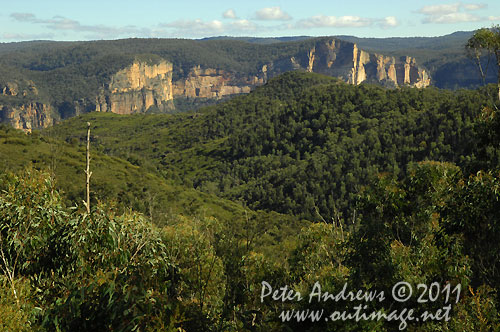 Looking towards the Grose Valley in the Blue Mountains, from the Bells Line of Road. Photo copyright Peter Andrews, Outimage Australia.