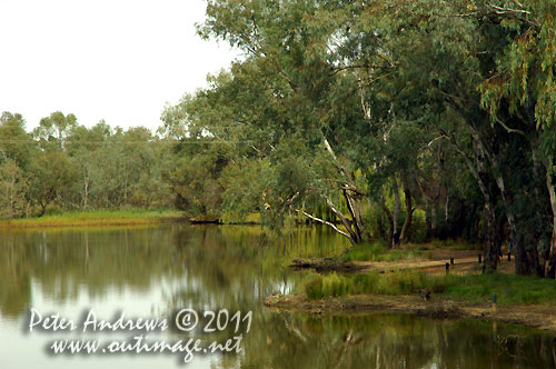 The Bogan River, Nyngan, NSW Australia.  Photo copyright Peter Andrews, Outimage Australia.