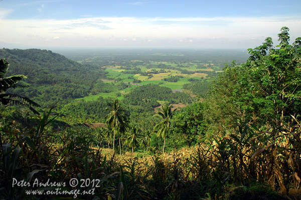 At the top of a mountain pass on the President Roxas - Arakan Valley Road, a field of corn desends into the valley below. Cotabato Province, Mindanao, Philippines. Photo copyright Peter Andrews, Outimage Australia.