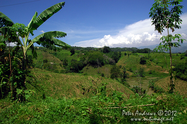 Overlooking the Arakan Valley, Cotabato Province, Mindanao, Philippines. Photo copyright Peter Andrews, Outimage Australia.