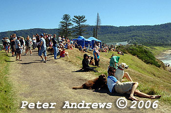 The morning crowd at Sandon Point Bulli.
